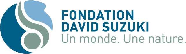 Fondation David Suzuki - Un monde, Une nature.